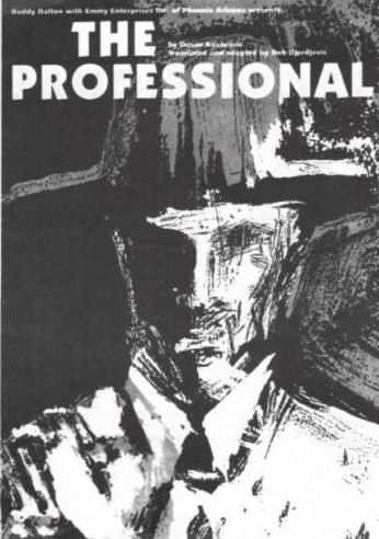 The Professional programme